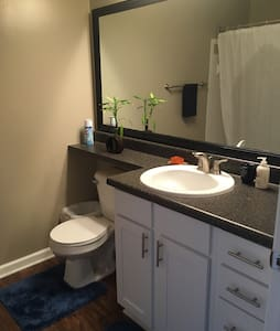 Large bedroom w/king bed & bath - Raleigh - Apartment