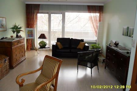 Bel appartement meublé parfaitement desservi - Leilighet