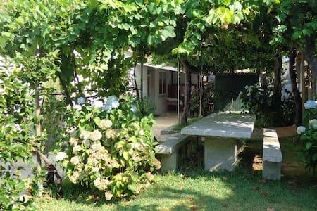 Casa en Tomiño (Pontevedra) - Tomiño - Casa
