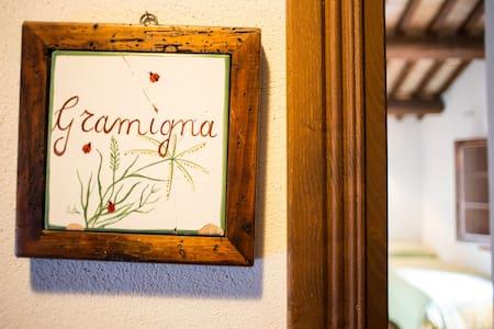 Splendida camera in campagna Sabin - Poggio Mirteto - Bed & Breakfast