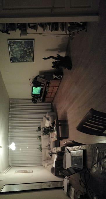 Private room in Leiden