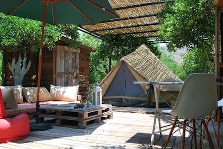 Campo Portakal, Eco Glamping in Bell Tent, Cirali - Ulupınar Köyü - Barraca