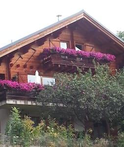 chalet Les Brimbelles Alpe d'Huez VILLAGE - Huez - Chalet