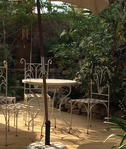 Beautiful Desert Villa and garden. - Eilat