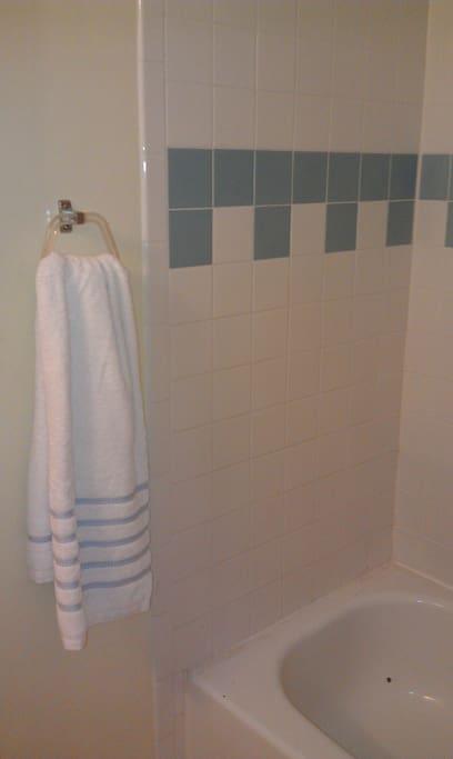 Clean shower/full Bath