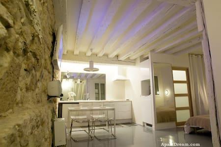 Center Paris Large Apartment Studio