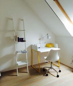 Baja belvaros kiado szoba! Room to let! - Wohnung