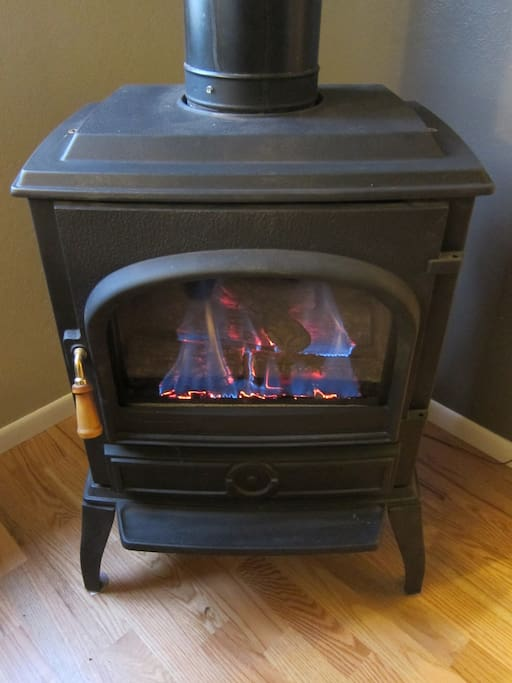 Cute natural gas stove with flickering flames in the living room adds ambience