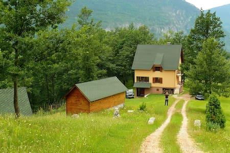 Accommodation in Tara Canyon - Casa de camp