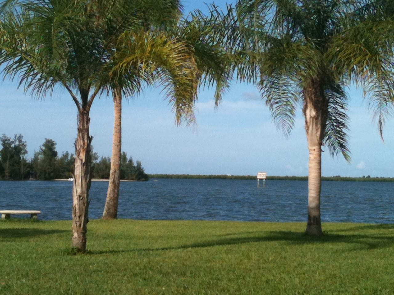 Old Palm- Waterfront Oasis 3BR/2Bth