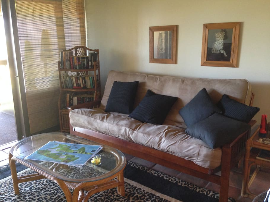 spacious living room loaded with maps, books for exploring