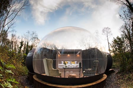Bubble Dome Set in Ancient Woodland