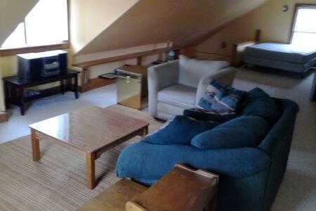 Spacious Room w/living/kitchenett