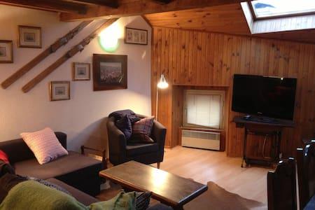 warm apartment for skiing - Osséja