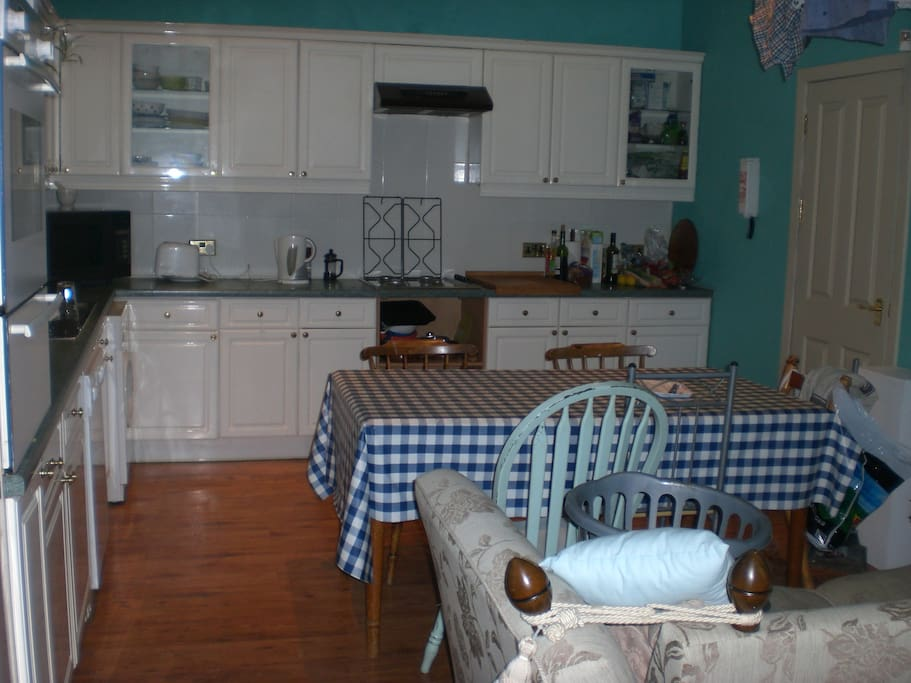 large well equipped kitchen/living room