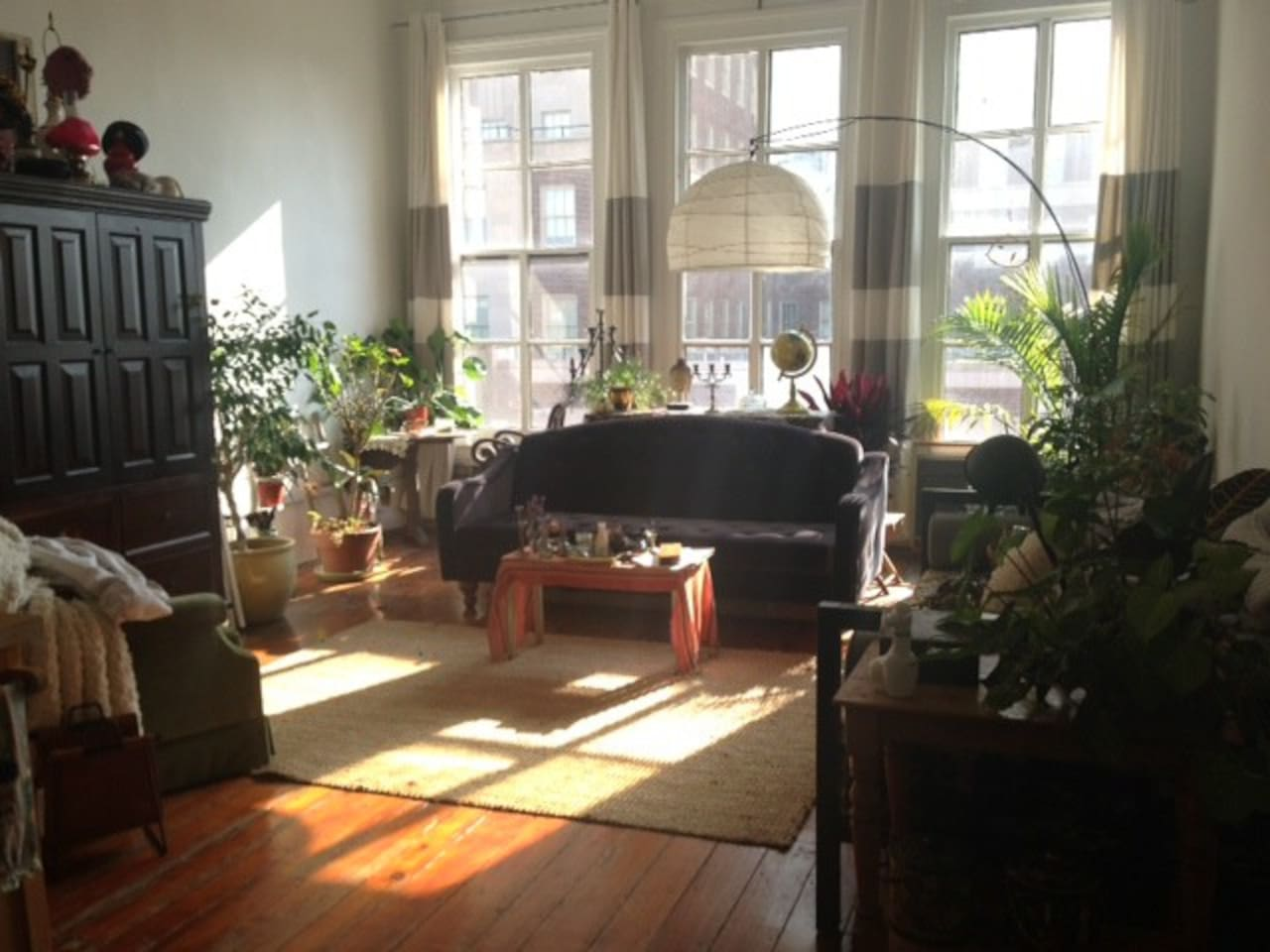 Incredible sunlight in the comfy living room