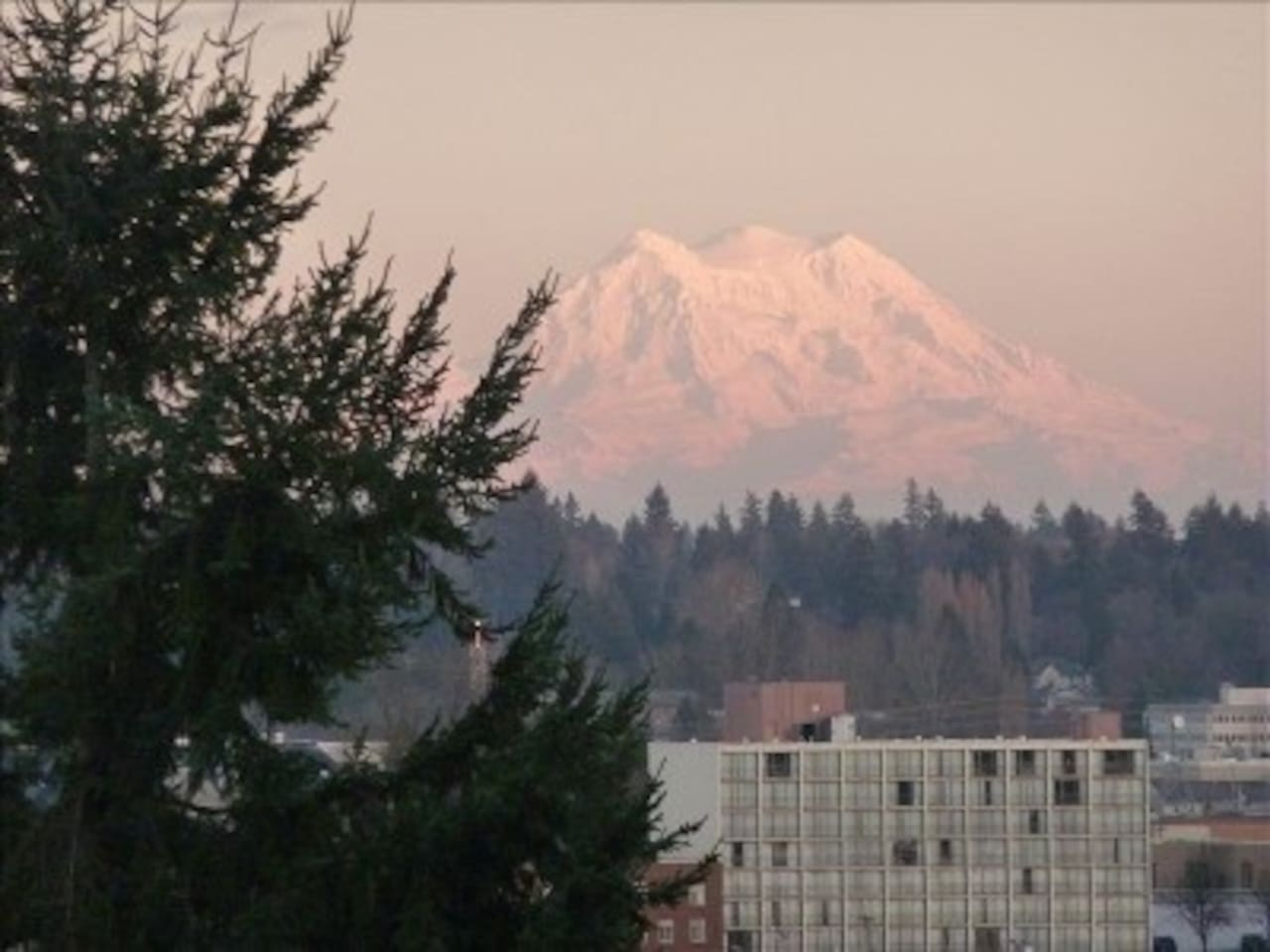 Enjoy Views of Mt Rainier, Capital Lake, Downtown and the Port of Olympia!