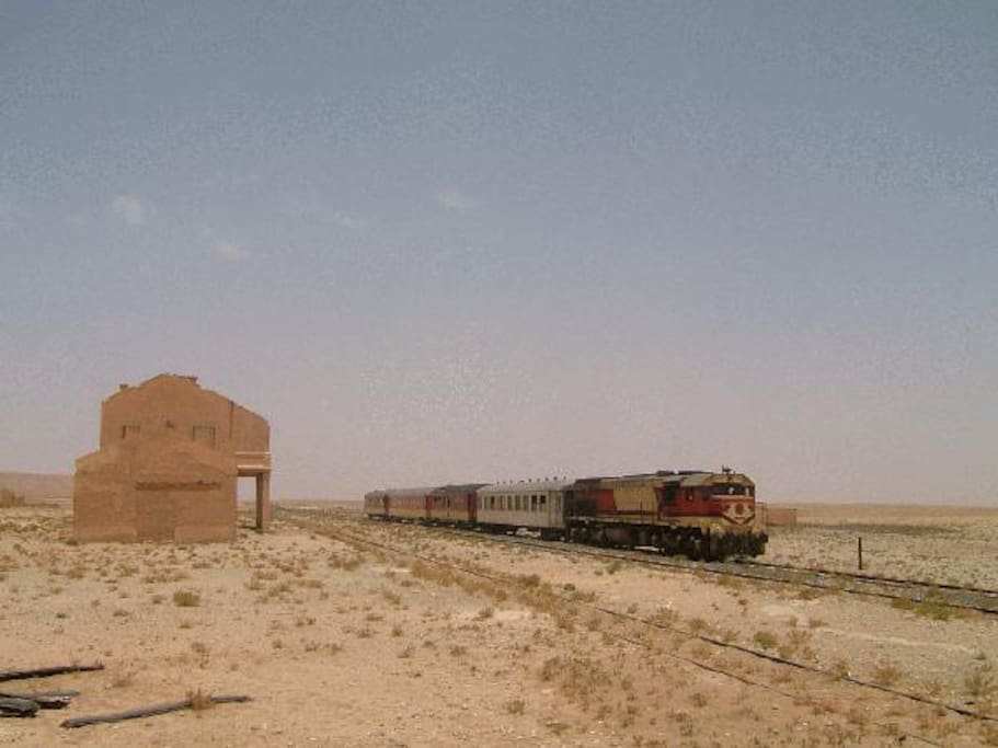 Experience Travelling On The Desert Train In Morocco a Train Set Just For You