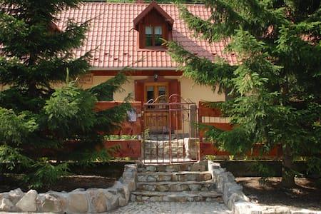 """Domek """"Joanna"""" w górach, w Kowarach - House"""
