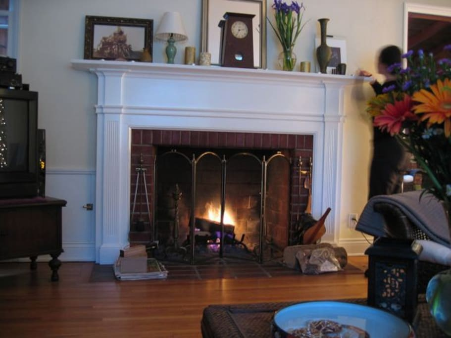 Our cozy fireplace in the living room ...