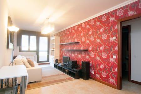 beautiful flat in Limpias-cantabria - Limpias - Huoneisto