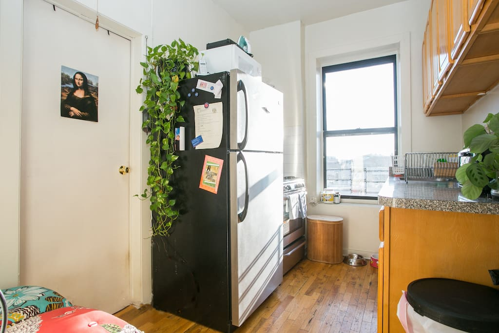 Clean well equipped kitchen. microwave, toaster oven and great stove.