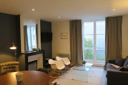 Gite du Lion Bleu - Blois - Appartement