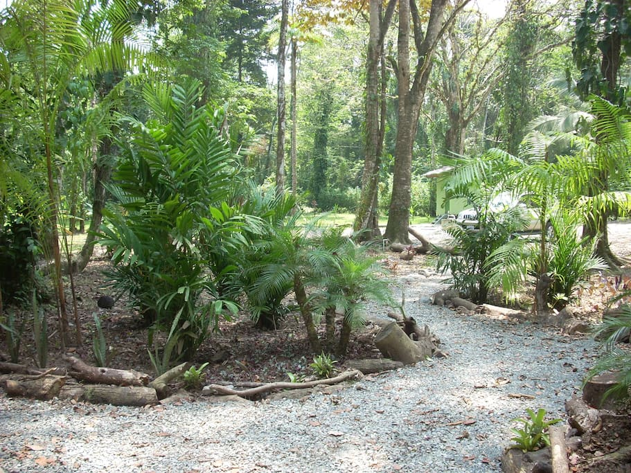 tropical gardens just 300 meters from the beach