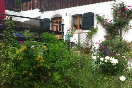 Maison à la montagne - Bellevaux - Huis