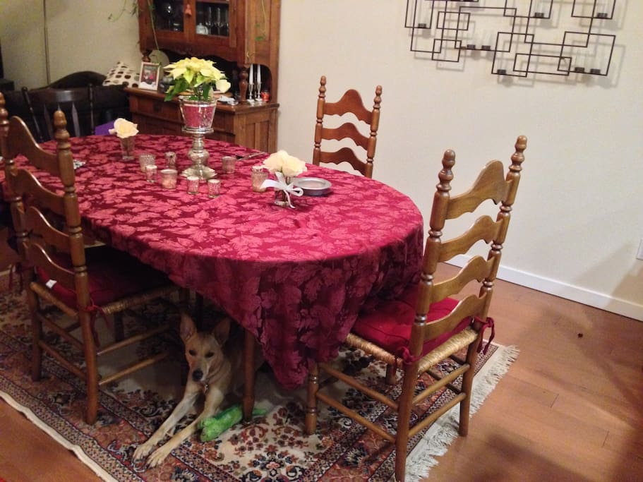 Dining Room, our dog Asia, likes to lie down under the table in case we drop any food!