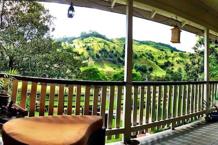Studio flat in picturesque valley - Illinbah