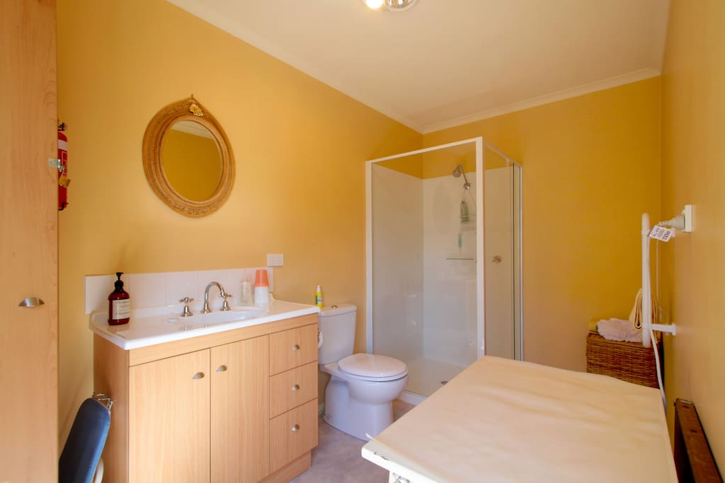 Ensuite modern bathroom with spacious shower, overhead heater and fan, heated towel rail, iron and ironing board, hair dryer