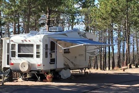 Glamping in The Forest - Camper/RV
