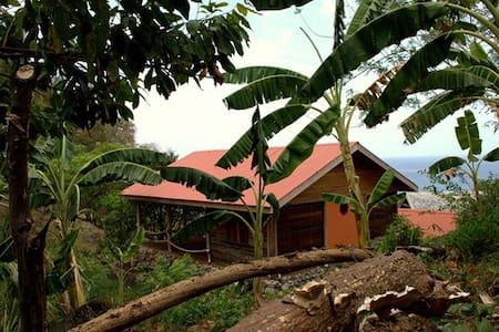 Crayfish Bay Organic Estate Grenada - victoria - Hus