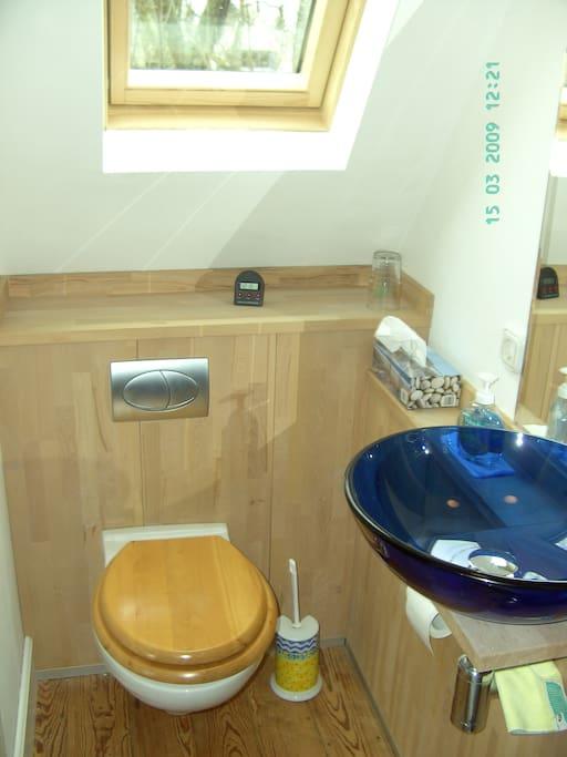 Duschbad mit Fenster /  toilet with shower and window