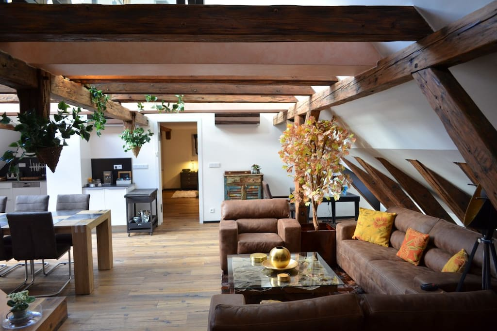 Grand luxury attic trziste charles bridge apartments for Designer apartment prague