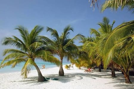 Affordable Maldives Holiday - Bed & Breakfast