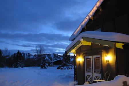 Powder Hound Lodge, sleeps 18 - Bessemer
