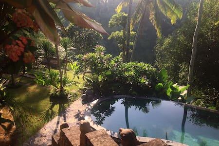 Luxurious villa,amazing view, Ubud