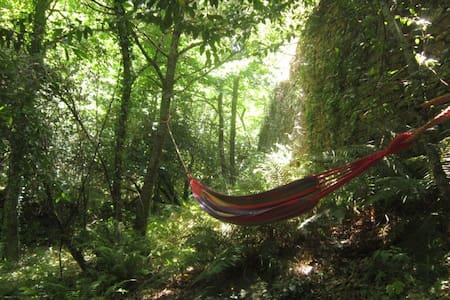 Immerse in Wild Nature at Awakened Forest Project - Apartament