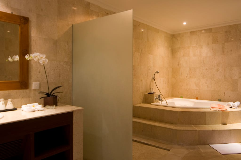 master bathroom with large bath tub, shower and lavatory