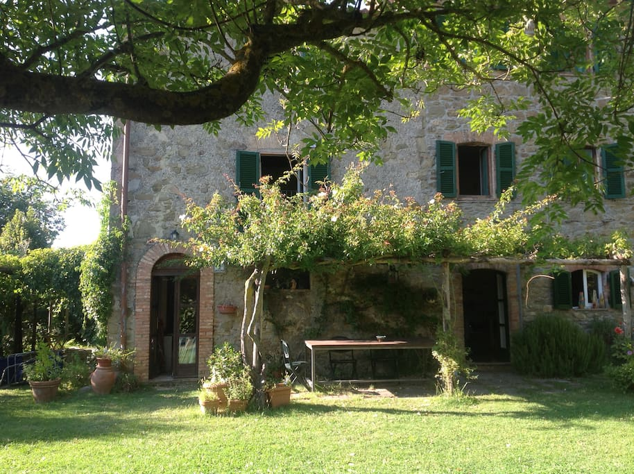 Stone countryhouse in olive grove