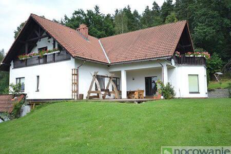 Willa Bukowiec - House