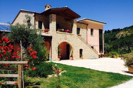 Bio Agriturismo Il Falco - Sant'Elpidio a Mare - Flat