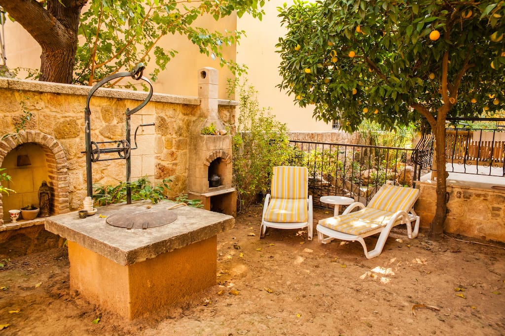Garden with relax chairs & orange tree