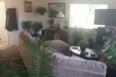 Room on Beautiful central coast! - House
