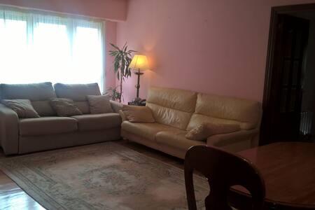 2 habitaciones dobles en San Sebastián , - Apartment