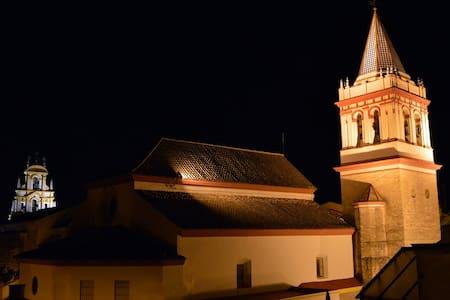 Bonita habitación con terraza en casco histórico. - Sevilla