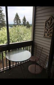 Great 3B/2B Condo with views of Lake Winnipausakee - Apartment