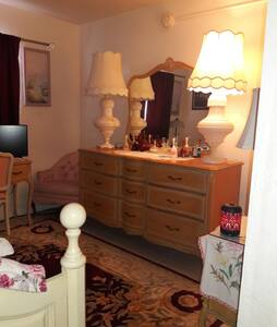 Cozy Downtown  Daybed Guestroom - Fort Myers - Appartement